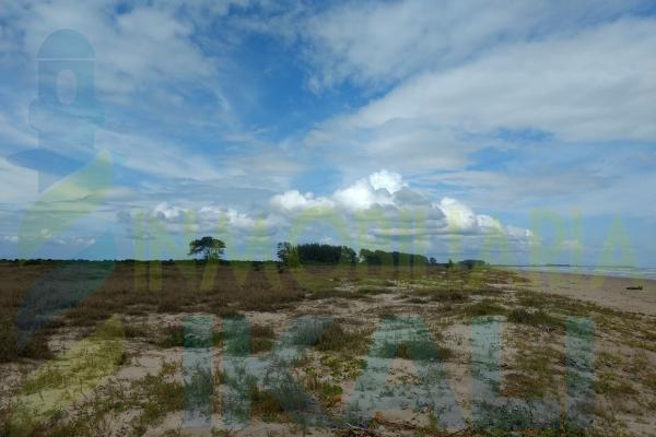 Foto de terreno habitacional en venta en  , palo blanco, tamiahua, veracruz de ignacio de la llave, 10076463 No. 06