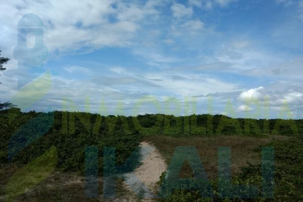 Foto de terreno habitacional en venta en  , palo blanco, tamiahua, veracruz de ignacio de la llave, 10076463 No. 08