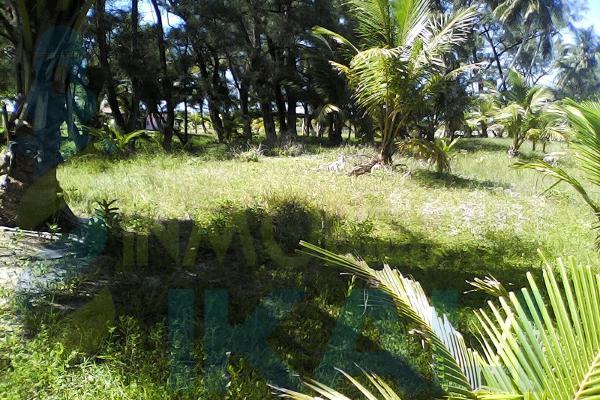 Foto de terreno habitacional en venta en  , palo blanco, tamiahua, veracruz de ignacio de la llave, 6140409 No. 02