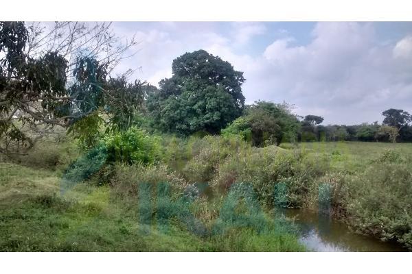 Foto de terreno habitacional en venta en  , palo blanco, tamiahua, veracruz de ignacio de la llave, 6140409 No. 03