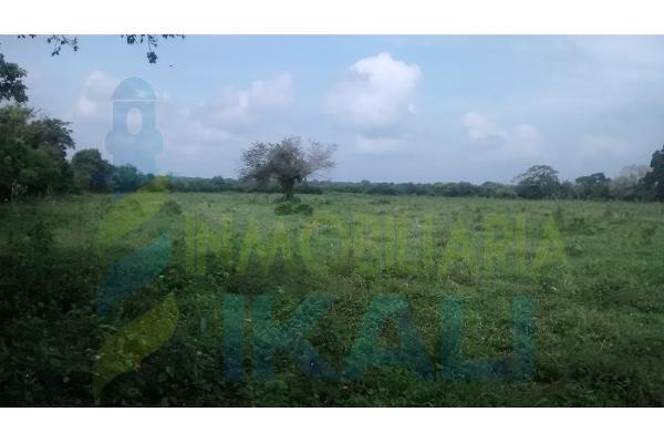 Foto de terreno habitacional en venta en  , palo blanco, tamiahua, veracruz de ignacio de la llave, 6140409 No. 04