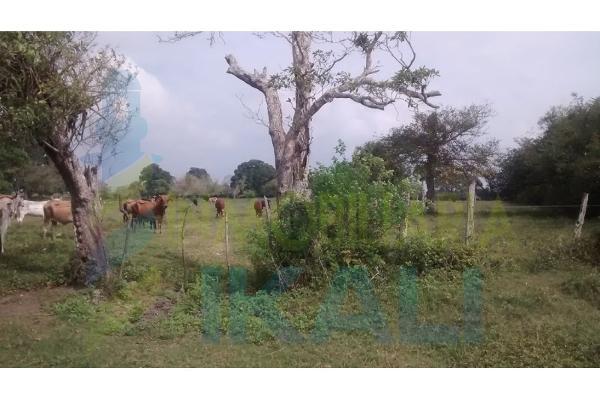 Foto de terreno habitacional en venta en  , palo blanco, tamiahua, veracruz de ignacio de la llave, 6140409 No. 05