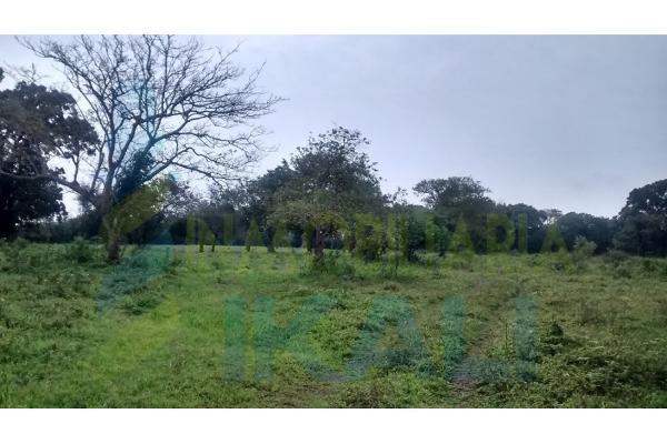 Foto de terreno habitacional en venta en  , palo blanco, tamiahua, veracruz de ignacio de la llave, 6140409 No. 07