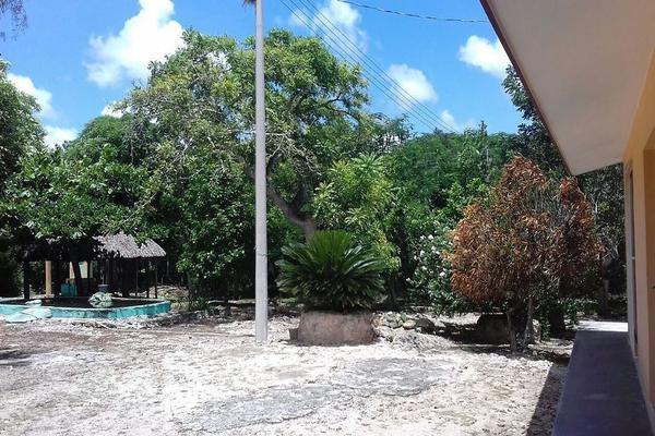 Foto de rancho en venta en  , panaba, panabá, yucatán, 5663461 No. 01