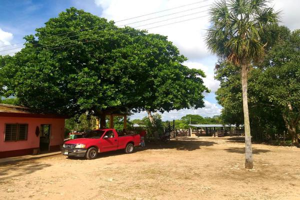 Foto de rancho en venta en  , panaba, panabá, yucatán, 5663461 No. 07