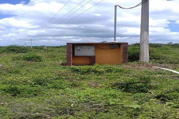 Foto de rancho en venta en  , panaba, panabá, yucatán, 5663461 No. 14