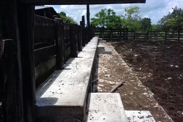 Foto de rancho en venta en  , panaba, panabá, yucatán, 5663461 No. 15