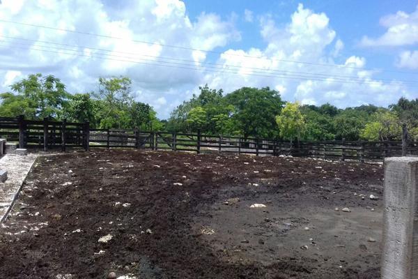 Foto de rancho en venta en  , panaba, panabá, yucatán, 5663461 No. 17