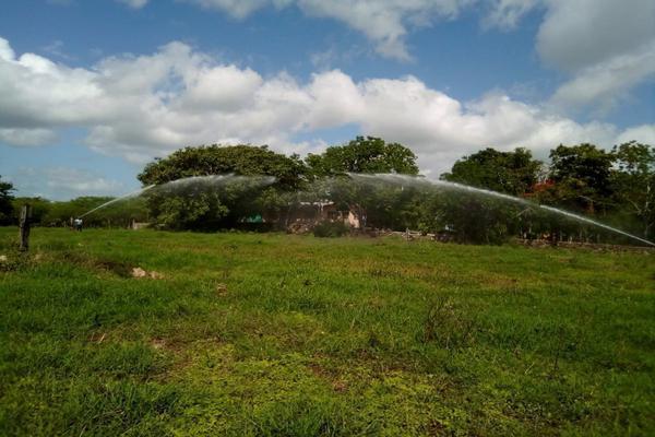 Foto de rancho en venta en  , panaba, panabá, yucatán, 5663461 No. 25