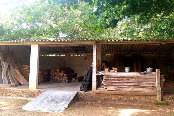Foto de rancho en venta en  , panaba, panabá, yucatán, 5663461 No. 30