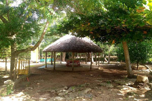 Foto de rancho en venta en  , panaba, panabá, yucatán, 5663461 No. 40