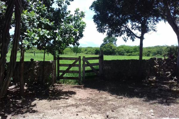 Foto de rancho en venta en  , panaba, panabá, yucatán, 5663461 No. 43