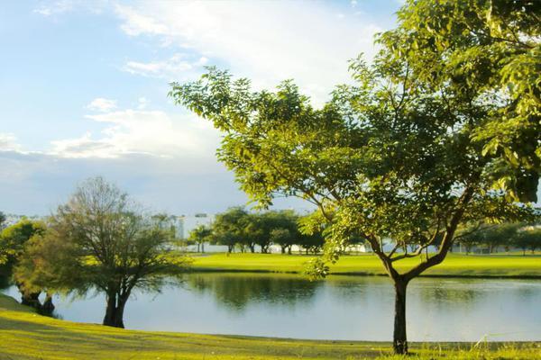 Foto de departamento en renta en paraiso country club 7, paraíso country club, emiliano zapata, morelos, 16675916 No. 31