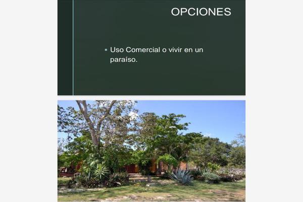 Foto de rancho en venta en  , paraíso maya, benito juárez, quintana roo, 0 No. 03