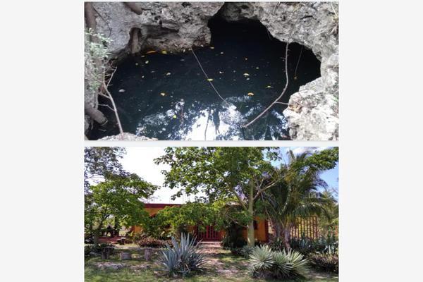 Foto de rancho en venta en  , paraíso maya, benito juárez, quintana roo, 0 No. 04