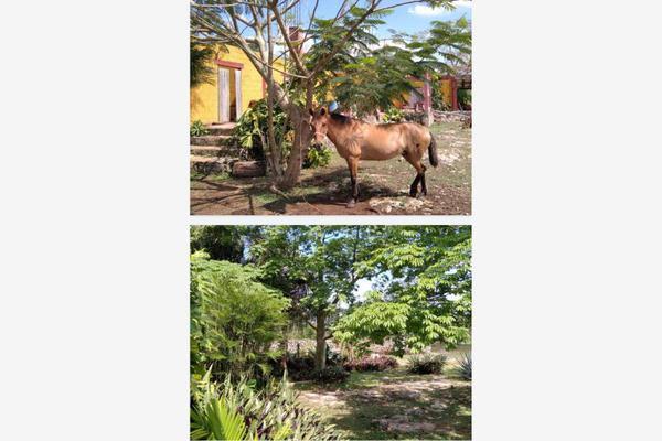 Foto de rancho en venta en  , paraíso maya, benito juárez, quintana roo, 0 No. 05