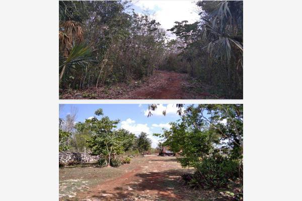Foto de rancho en venta en  , paraíso maya, benito juárez, quintana roo, 0 No. 07