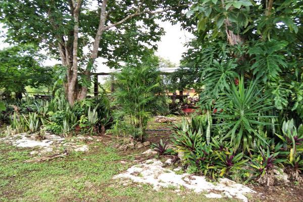Foto de rancho en venta en  , paraíso maya, benito juárez, quintana roo, 0 No. 08