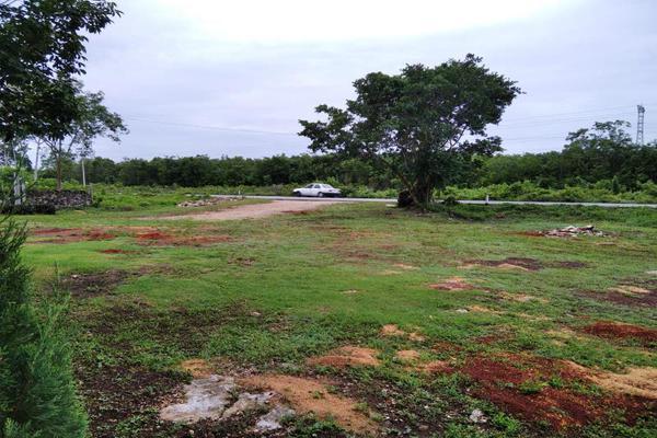 Foto de rancho en venta en  , paraíso maya, benito juárez, quintana roo, 0 No. 09