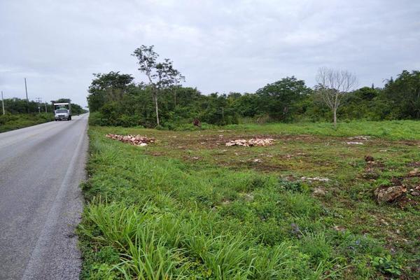 Foto de rancho en venta en  , paraíso maya, benito juárez, quintana roo, 0 No. 10