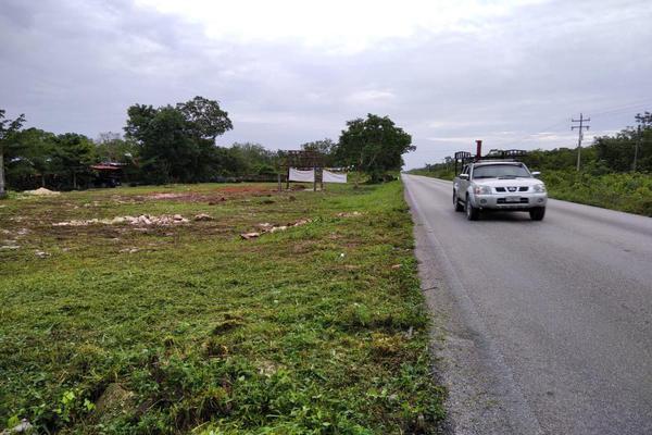 Foto de rancho en venta en  , paraíso maya, benito juárez, quintana roo, 0 No. 11