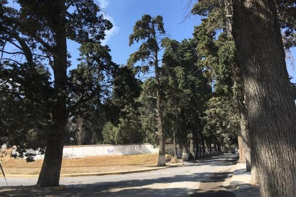 Foto de terreno habitacional en venta en paraje camposanto 1, calimaya de diaz gonzález, calimaya, méxico, 5294334 No. 03