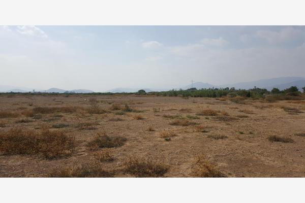 Foto de terreno comercial en venta en paraje cruz de piedra 0, paraje yasibb, tlacolula de matamoros, oaxaca, 13369693 No. 08