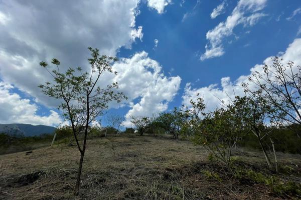 Foto de terreno habitacional en venta en paraje de las salinas , paraje de las salinas, san andrés huayápam, oaxaca, 20169147 No. 01