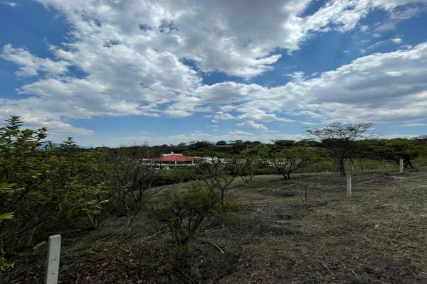 Foto de terreno habitacional en venta en paraje de las salinas , paraje de las salinas, san andrés huayápam, oaxaca, 20169147 No. 04
