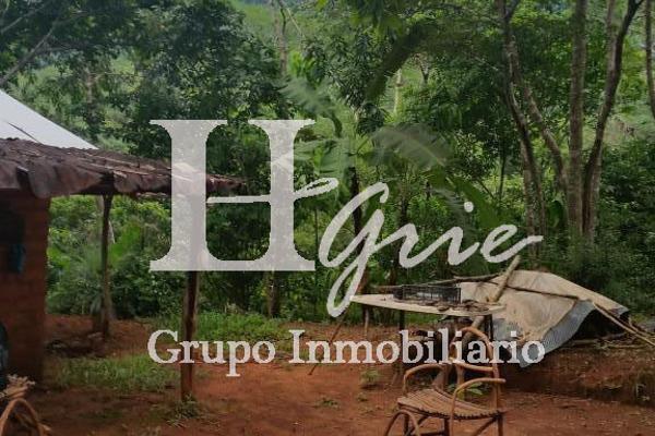 Foto de terreno habitacional en venta en paraje erradura , santa maria huatulco centro, santa maría huatulco, oaxaca, 2731390 No. 07