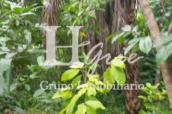 Foto de terreno habitacional en venta en paraje erradura , santa maria huatulco centro, santa maría huatulco, oaxaca, 2731390 No. 08