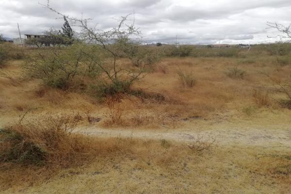 Foto de terreno habitacional en venta en paraje la espinera s/n , soledad etla, soledad etla, oaxaca, 11515867 No. 01