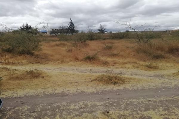Foto de terreno habitacional en venta en paraje la espinera s/n , soledad etla, soledad etla, oaxaca, 11515867 No. 04