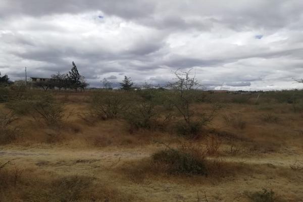 Foto de terreno habitacional en venta en paraje la espinera s/n , soledad etla, soledad etla, oaxaca, 11515867 No. 05