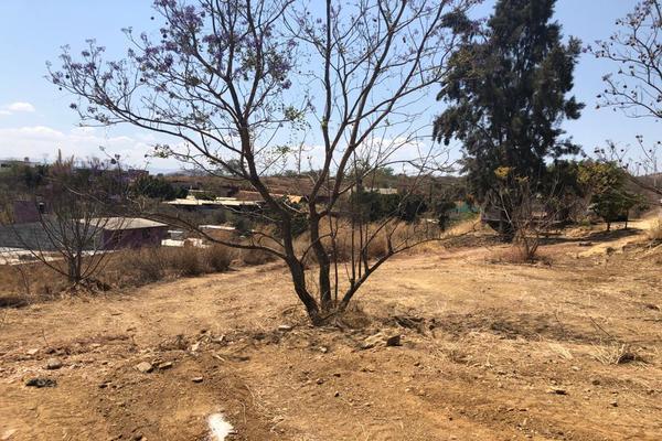 Foto de terreno habitacional en venta en paraje la loma del borrego , paraje de las salinas, san andrés huayápam, oaxaca, 14959511 No. 08
