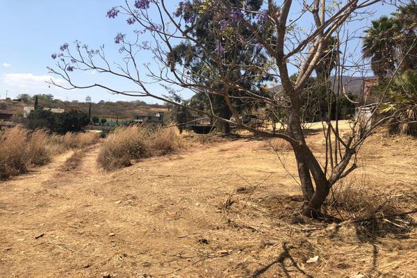 Foto de terreno habitacional en venta en paraje la loma del borrego , paraje de las salinas, san andrés huayápam, oaxaca, 14959511 No. 09