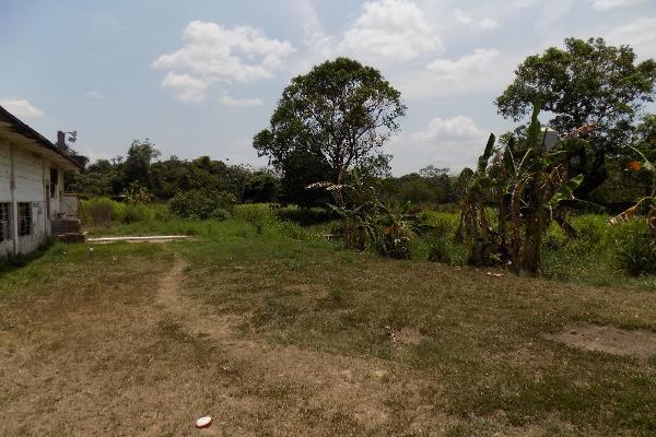 Foto de terreno habitacional en venta en parcela 127 y 120 s/n , mapachapa, minatitlán, veracruz de ignacio de la llave, 8320064 No. 03