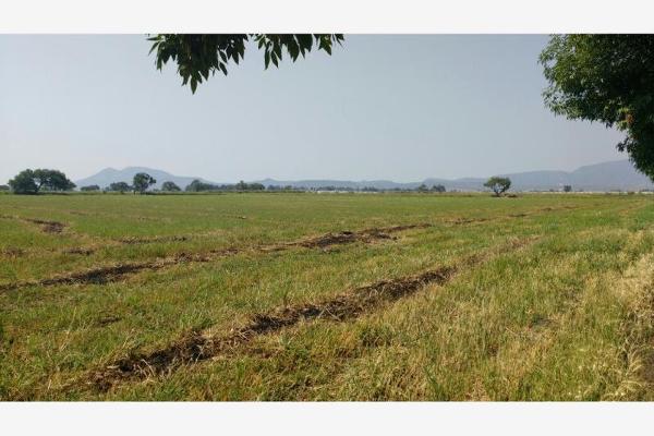 Foto de terreno industrial en venta en parcela 134 , la capilla, ixtlahuacán de los membrillos, jalisco, 2658732 No. 02