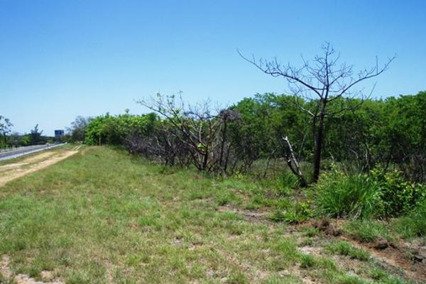 Foto de terreno habitacional en venta en parcela 19 carretera tampico tuxpan 0, ojital, pueblo viejo, veracruz de ignacio de la llave, 2647708 No. 02