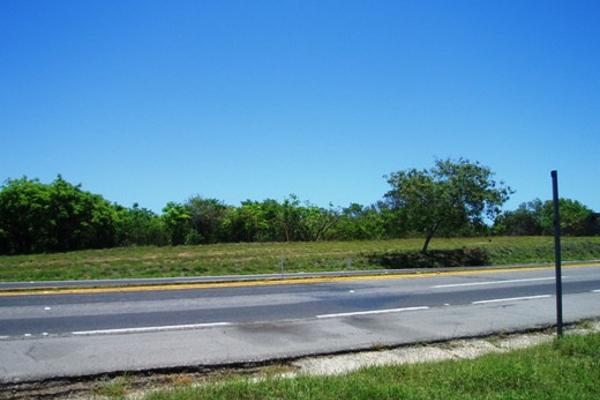 Foto de terreno habitacional en venta en parcela 19 carretera tampico tuxpan 0, ojital, pueblo viejo, veracruz de ignacio de la llave, 2647708 No. 04