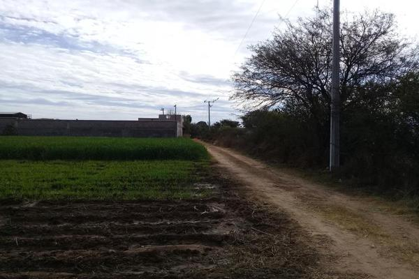 Foto de terreno comercial en venta en parcela 24 000, la florida, jesús maría, aguascalientes, 6202648 No. 02