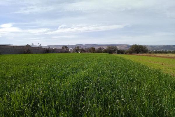 Foto de terreno comercial en venta en parcela 24 000, la florida, jesús maría, aguascalientes, 6202648 No. 04