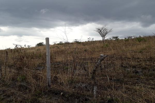 Foto de terreno habitacional en venta en parcela numero 2478 , berriozabal centro, berriozábal, chiapas, 3095944 No. 01