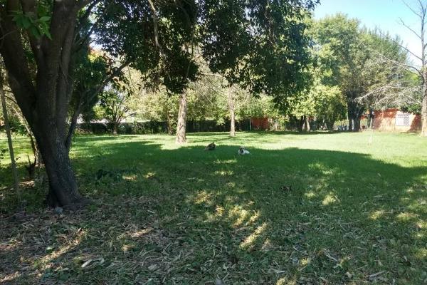 Foto de terreno habitacional en venta en paricutín 101, montebello, juárez, chihuahua, 10086444 No. 01
