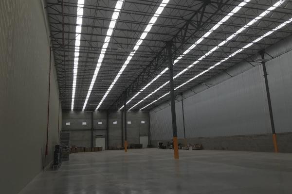 Foto de nave industrial en renta en  , parque industrial impulso, chihuahua, chihuahua, 8111752 No. 06