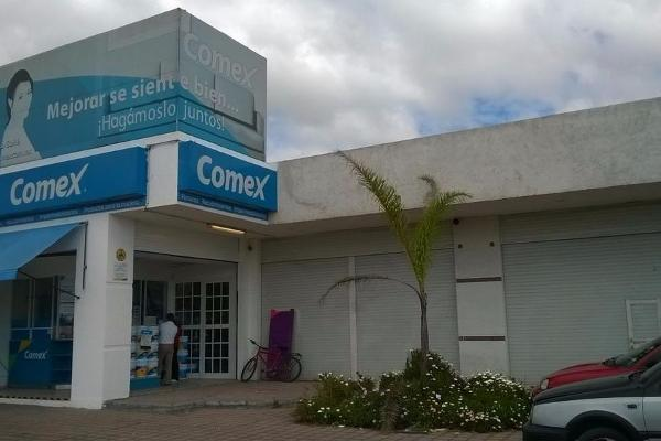 Foto de local en renta en  , parques nacionales, toluca, méxico, 2624295 No. 03