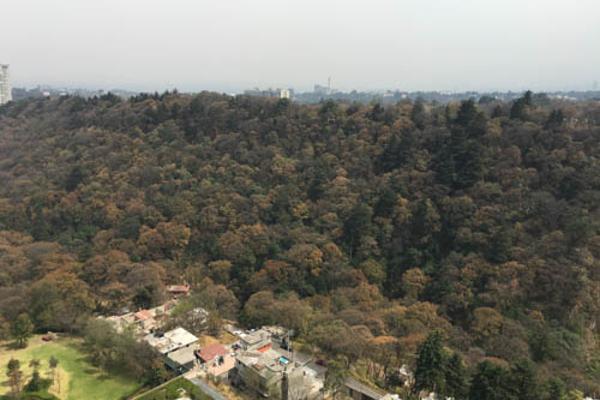 Foto de departamento en venta en parques reforma , cuajimalpa, cuajimalpa de morelos, df / cdmx, 5424924 No. 08