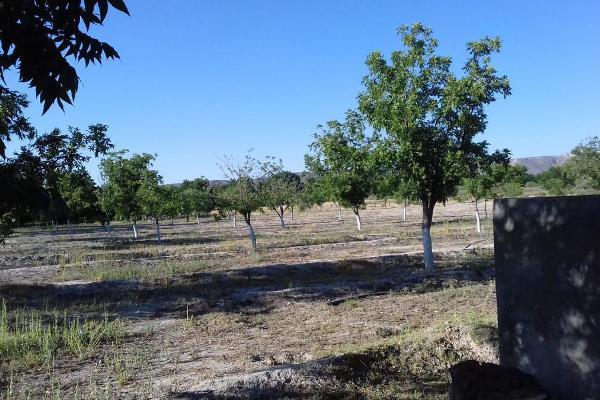 Foto de terreno habitacional en venta en  , parras, parras, coahuila de zaragoza, 8070358 No. 02