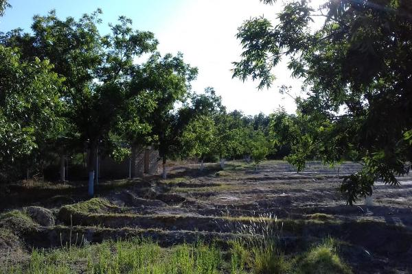Foto de terreno habitacional en venta en  , parras, parras, coahuila de zaragoza, 8070358 No. 03