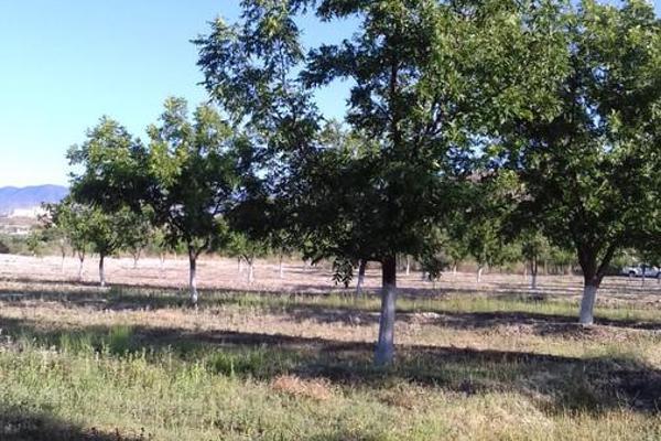 Foto de terreno habitacional en venta en  , parras, parras, coahuila de zaragoza, 8070358 No. 04